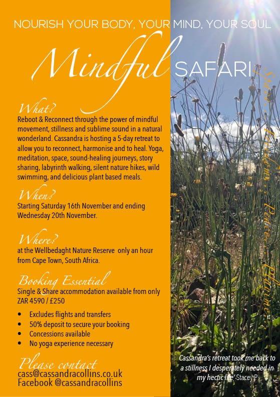 mindful-safari